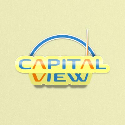 CAPITAL VIEW фото f_4fde413b51413.png