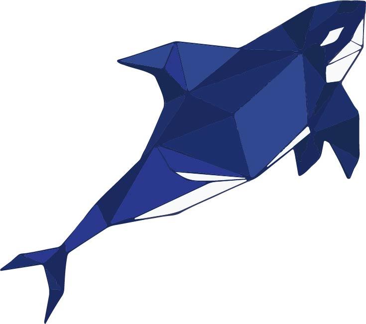 Разработка фирменного символа компании - касатки, НЕ ЛОГОТИП фото f_3705afef39f9b2fa.jpg