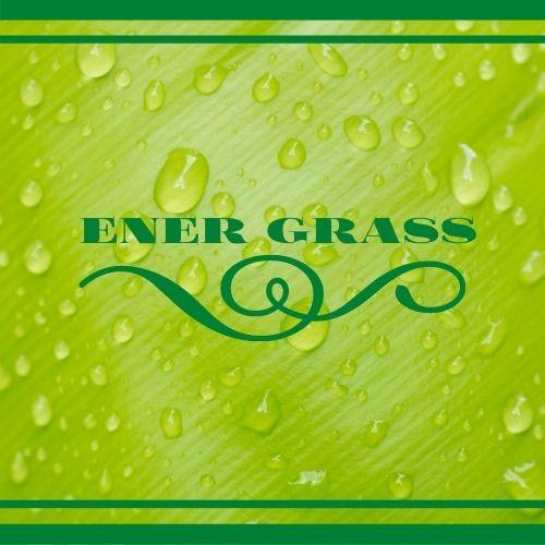 Графический дизайнер для создания логотипа Energrass. фото f_0795f8fc7f49d41c.jpg