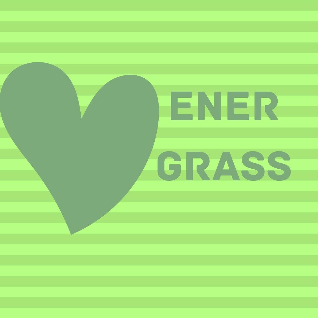 Графический дизайнер для создания логотипа Energrass. фото f_1365f855139beee6.jpg