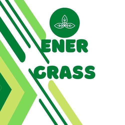 Графический дизайнер для создания логотипа Energrass. фото f_5185f8fbcfd5cb7f.jpg