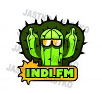 ЛОГОТИП/ INDI.FM