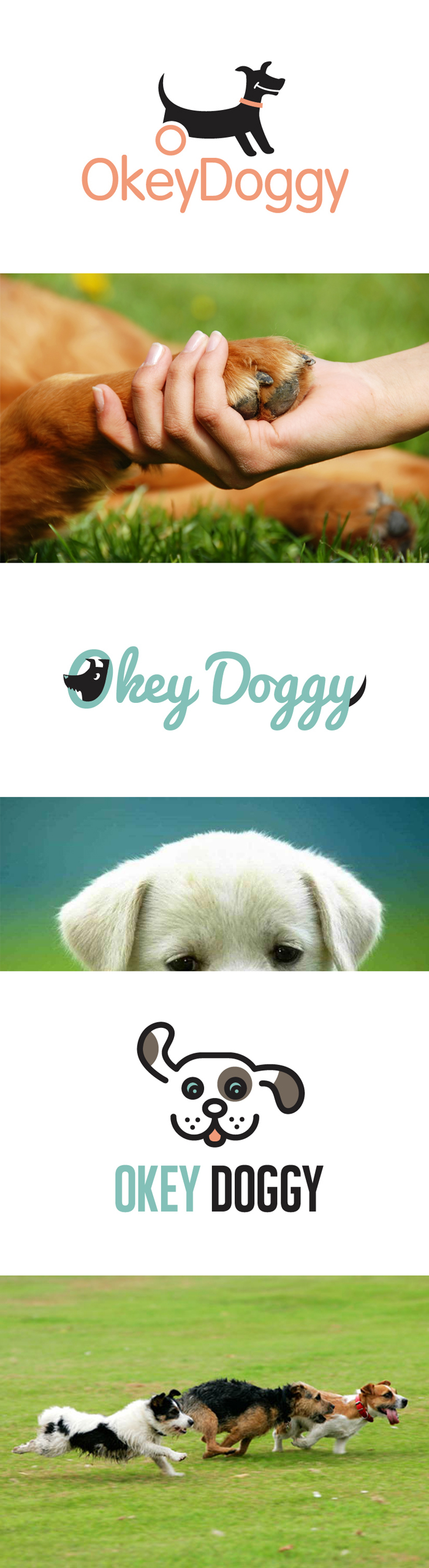 Логотип для компании производителя инвалидных колясок для собак OkeyDoggy