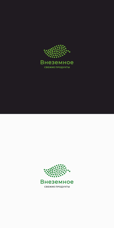 """Логотип и фирменный стиль """"Внеземное"""" фото f_1035e7a1fb25f0ff.png"""