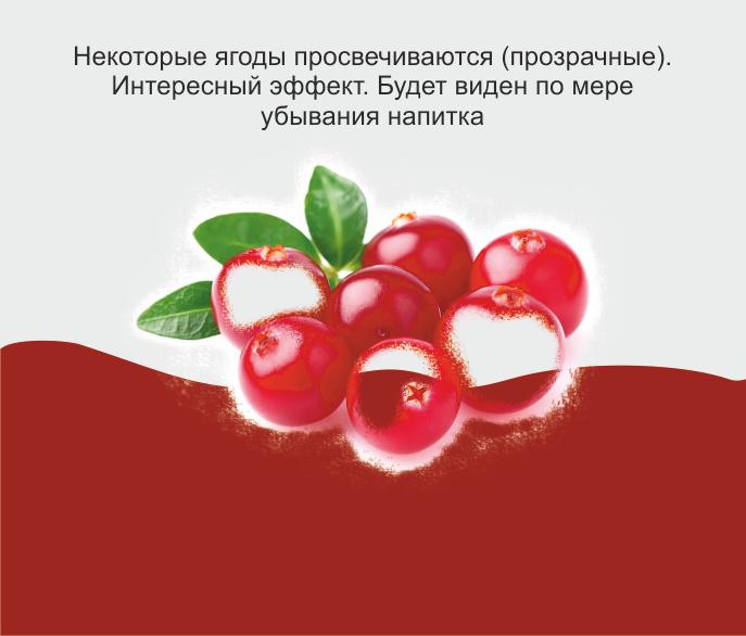 Дизайн этикетки алкогольного продукта (сладкая настойка) фото f_1265f8f06660fc1a.png