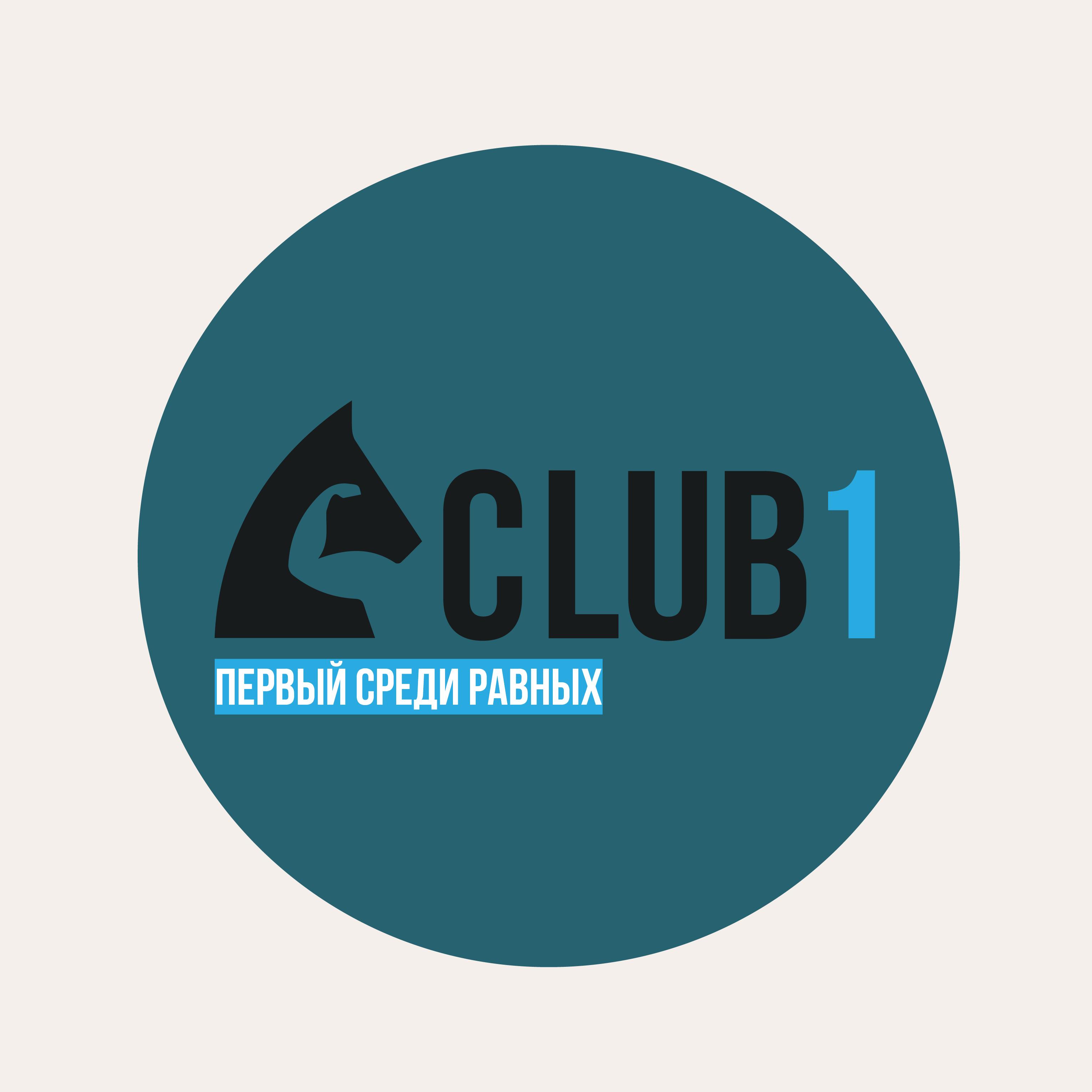 Логотип делового клуба фото f_8645f87571f8f791.png