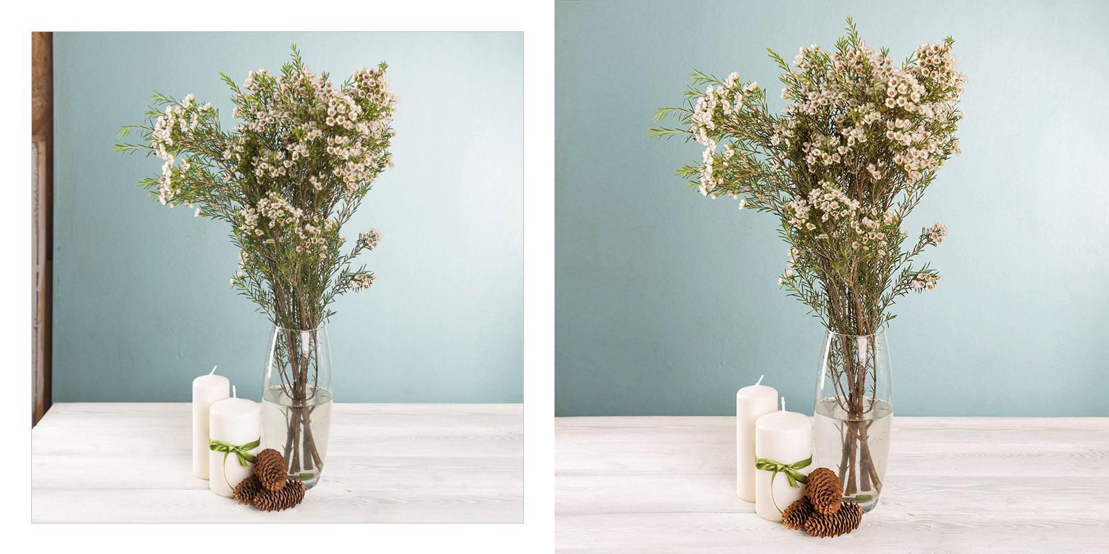 Цветы. Цветокоррекция, ретушь. (2)