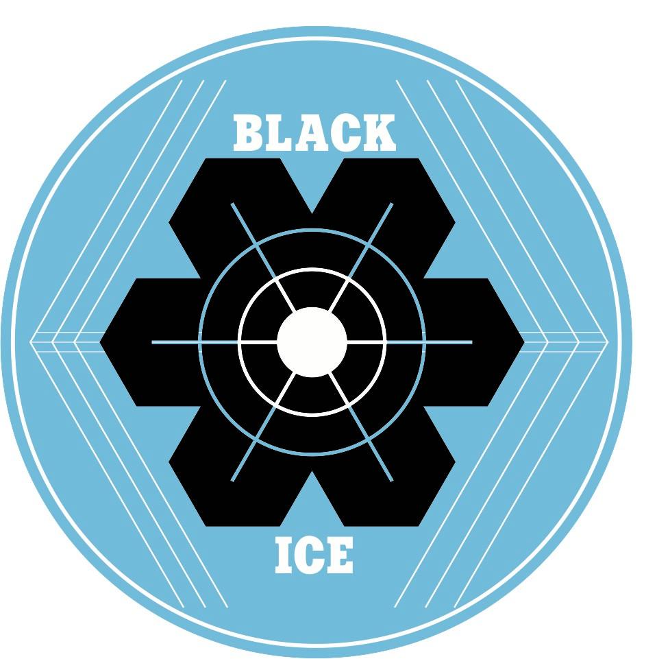 """Логотип + Фирменный стиль для компании """"BLACK ICE"""" фото f_71657133288b2e6a.jpg"""