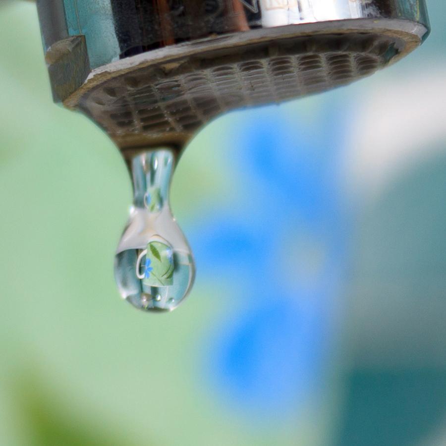 Ванная природа