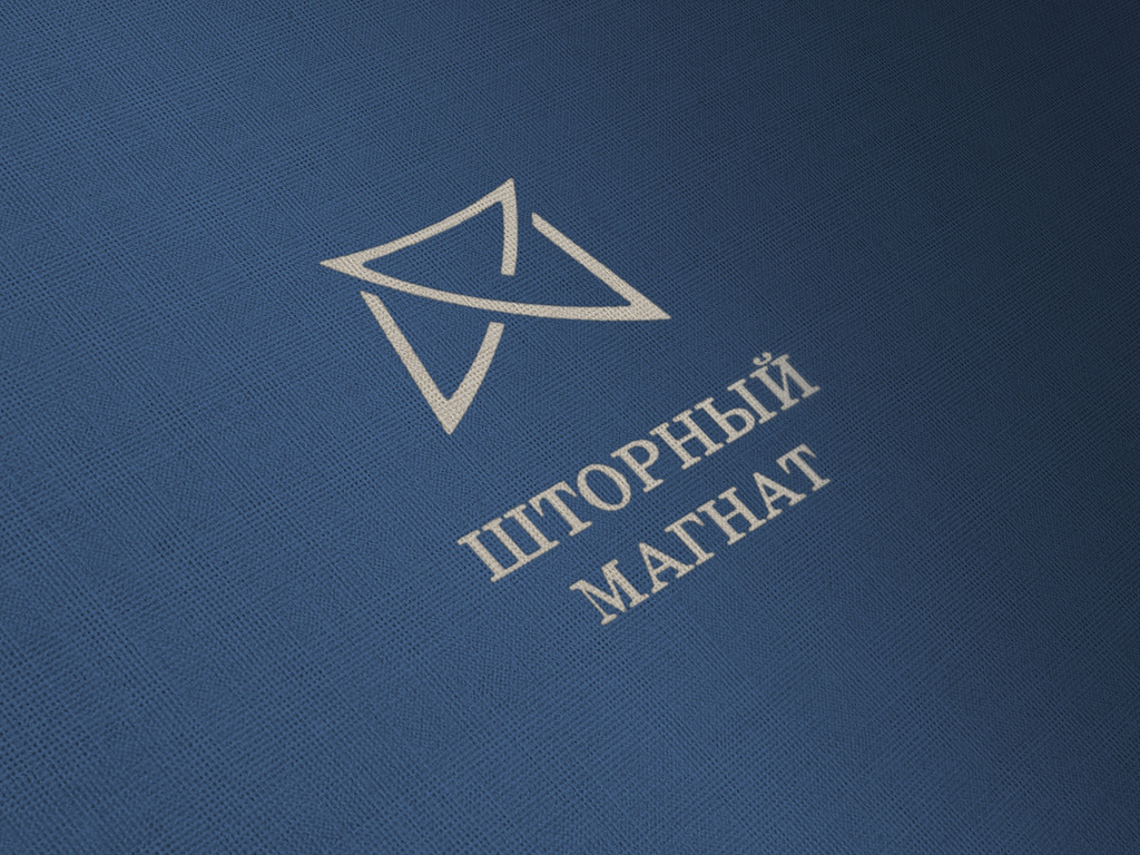 Логотип и фирменный стиль для магазина тканей. фото f_3805cd95496d4810.jpg