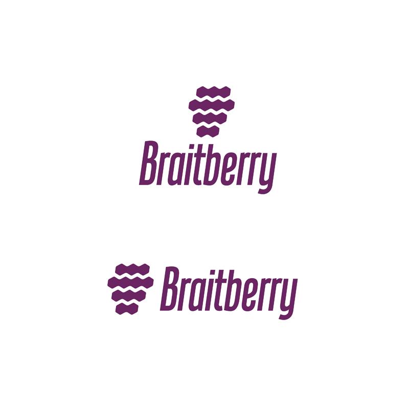 Braitberry test