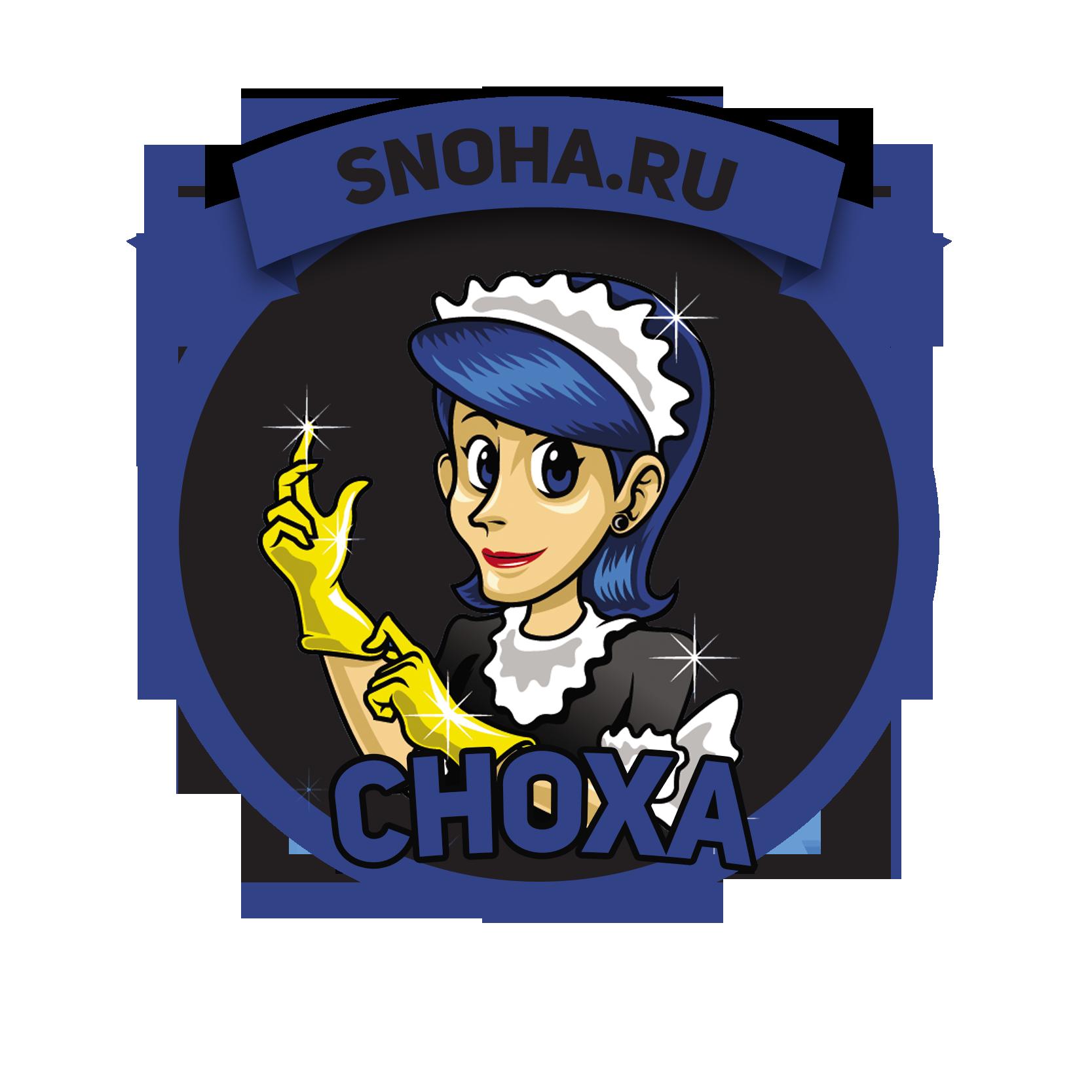 Логотип клининговой компании, сайт snoha.ru фото f_98654a41008949d1.png