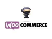 Интеграция 1С и woocommerce (wordpress)