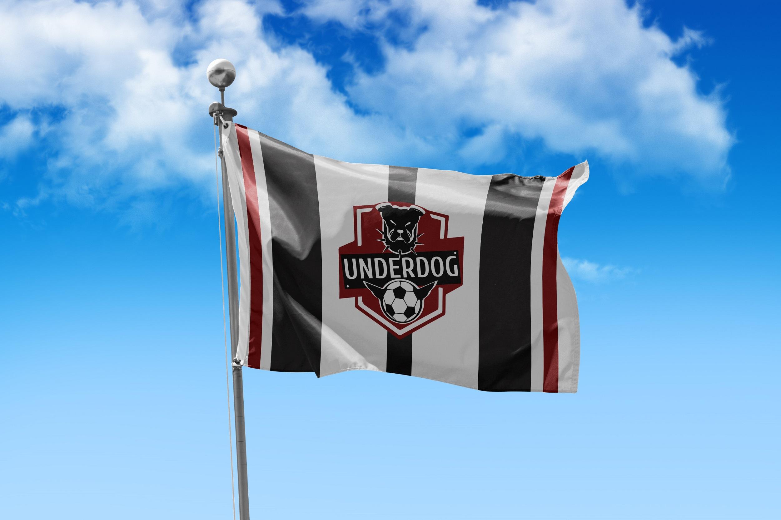 Футбольный клуб UNDERDOG - разработать фирстиль и бренд-бук фото f_0785caf7e6c1fcaa.jpg