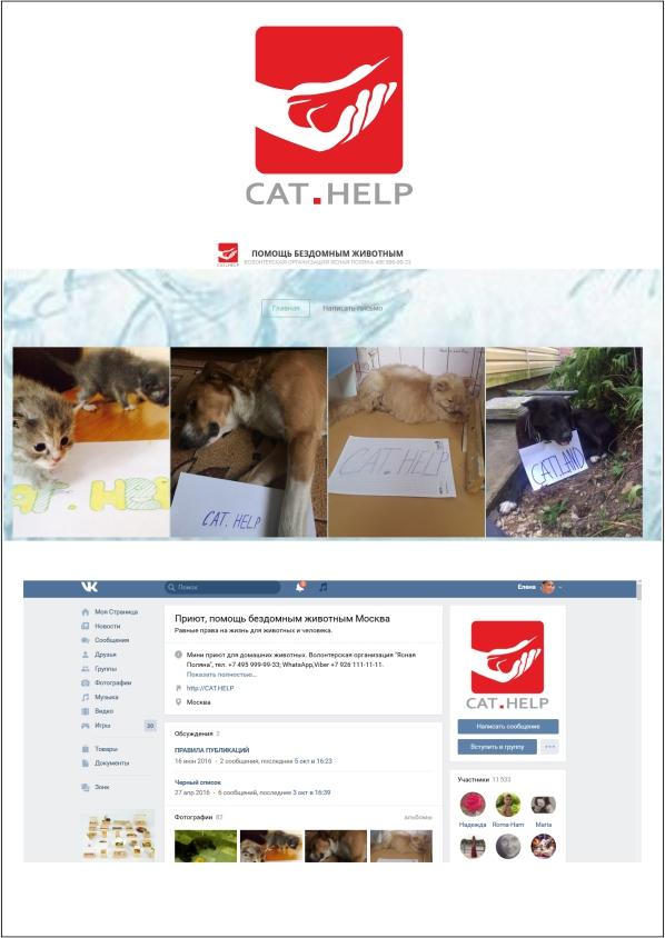 логотип для сайта и группы вк - cat.help фото f_36459e356ce9f7ba.jpg