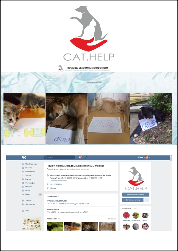 логотип для сайта и группы вк - cat.help фото f_88259e3571d74fc4.jpg