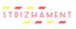 Дизайн лого бренда фото f_6455d4d7e50d90c1.png