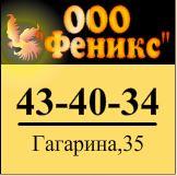 Баннер ООО ФЕНИКС