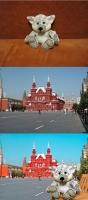 Коллаж (игрушка на Красной площади)