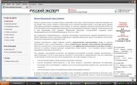 Русский эксперт (консалтинг)
