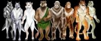 Персонажи звери