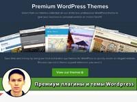 Премиум плагины и темы для wordpress