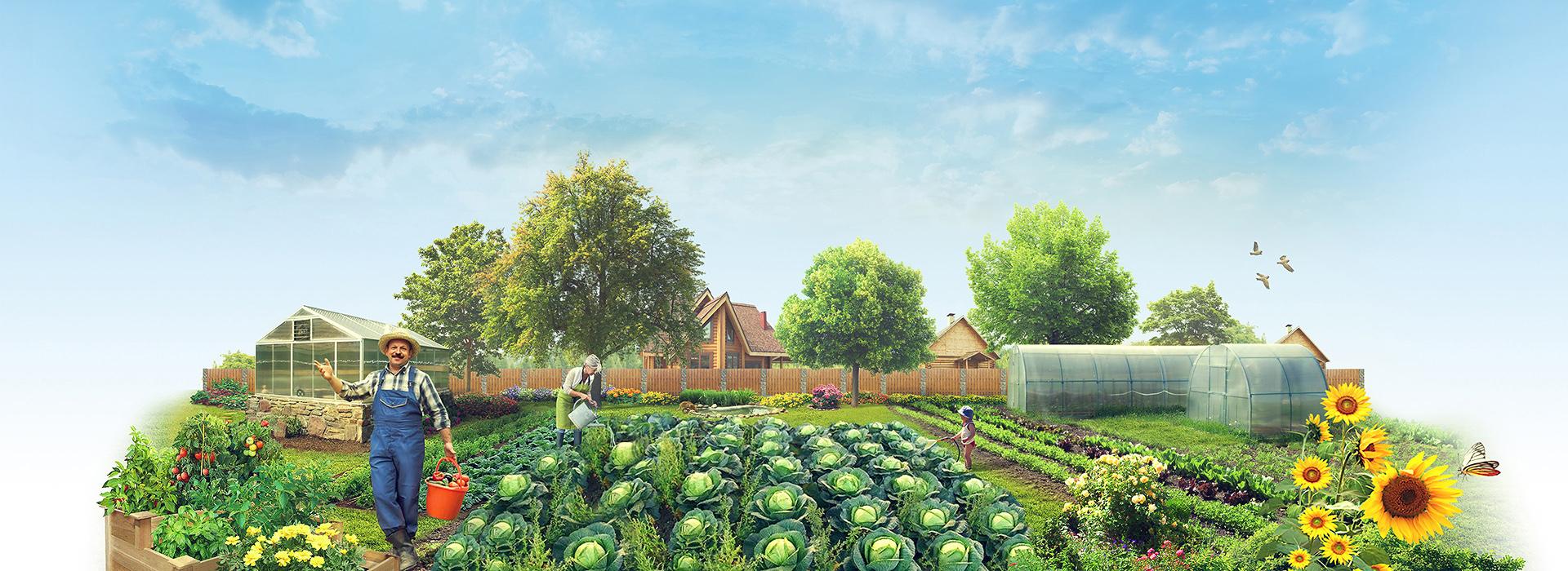Огородников