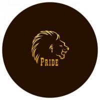 Логотип Pride