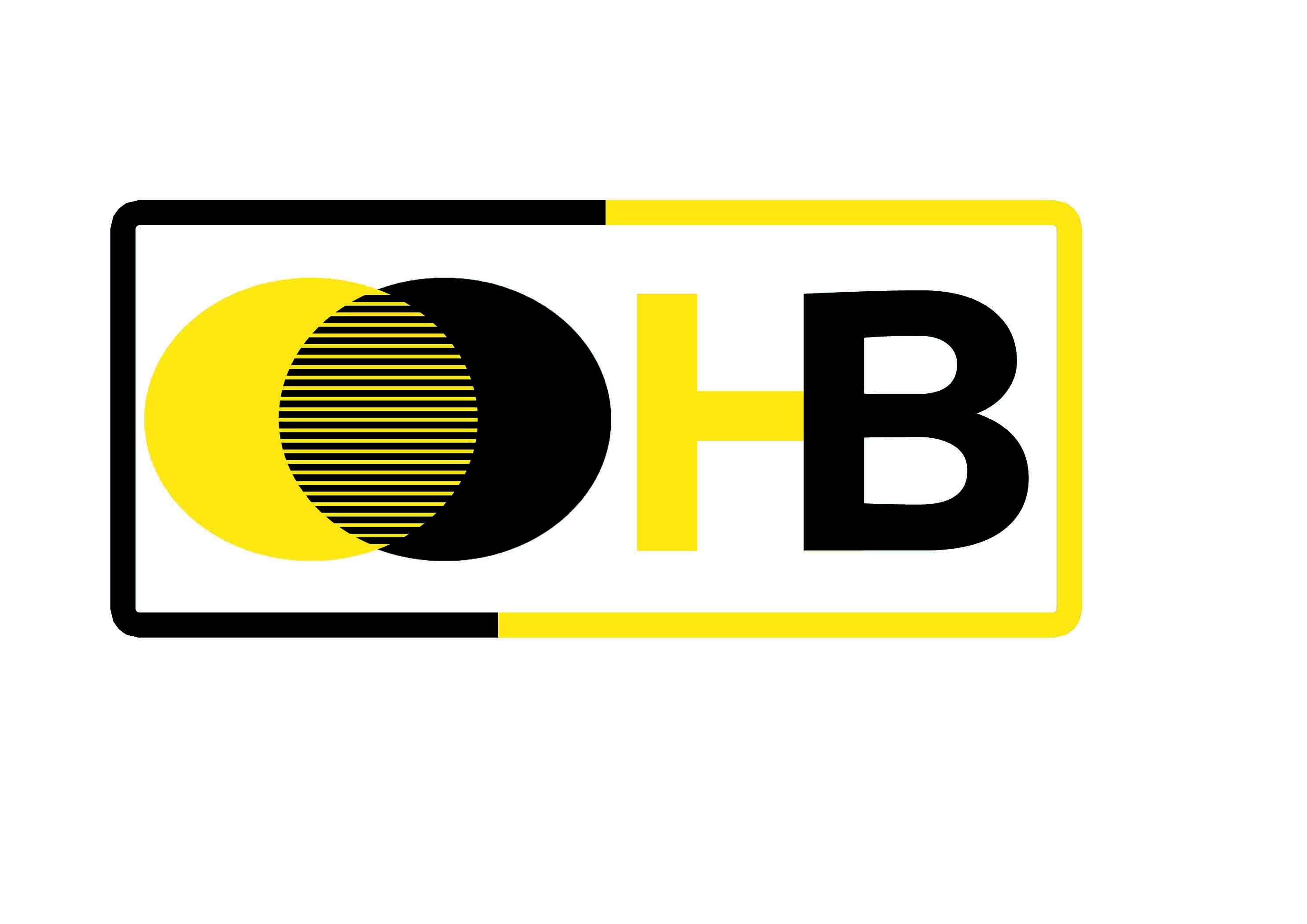 Логотип компании по перевозкам НосимВозим фото f_4205cfe1db2ae2ae.jpg