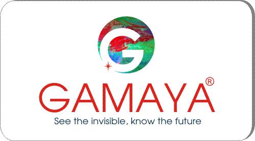 Разработка логотипа для компании Gamaya фото f_82954848965eb624.jpg