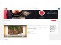 Youtube Flame dragon