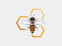 Логотип Пчела