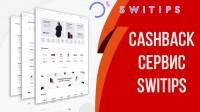 Презентация бизнес-проекта WWPC / SWITIPS