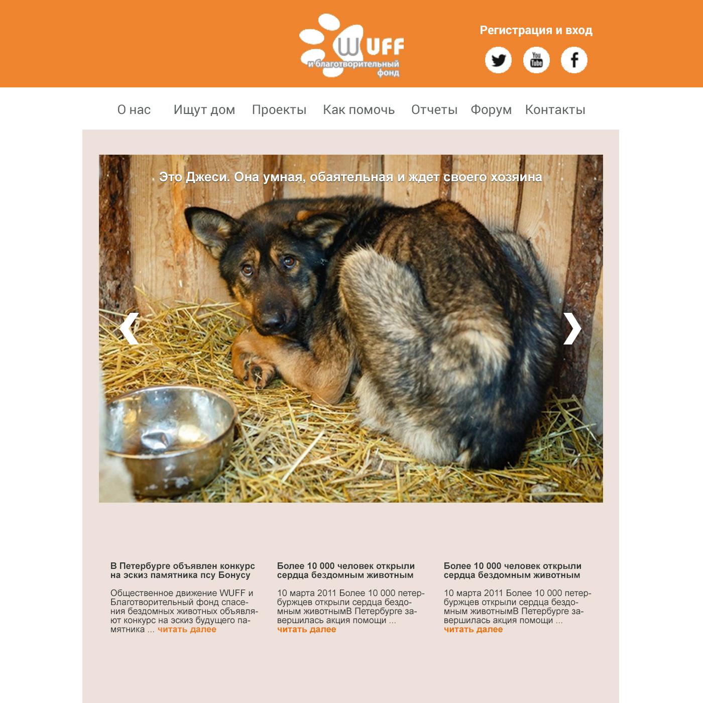 Требуется разработать дизайн сайта помощи бездомным животным фото f_4915878a08ca25ba.jpg