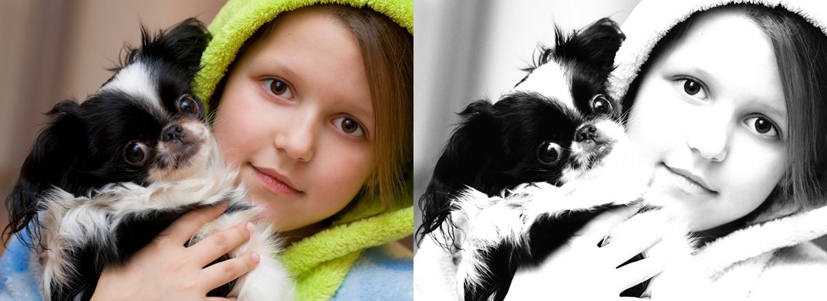 Перевод в черно-белое(девочка с собачкой)