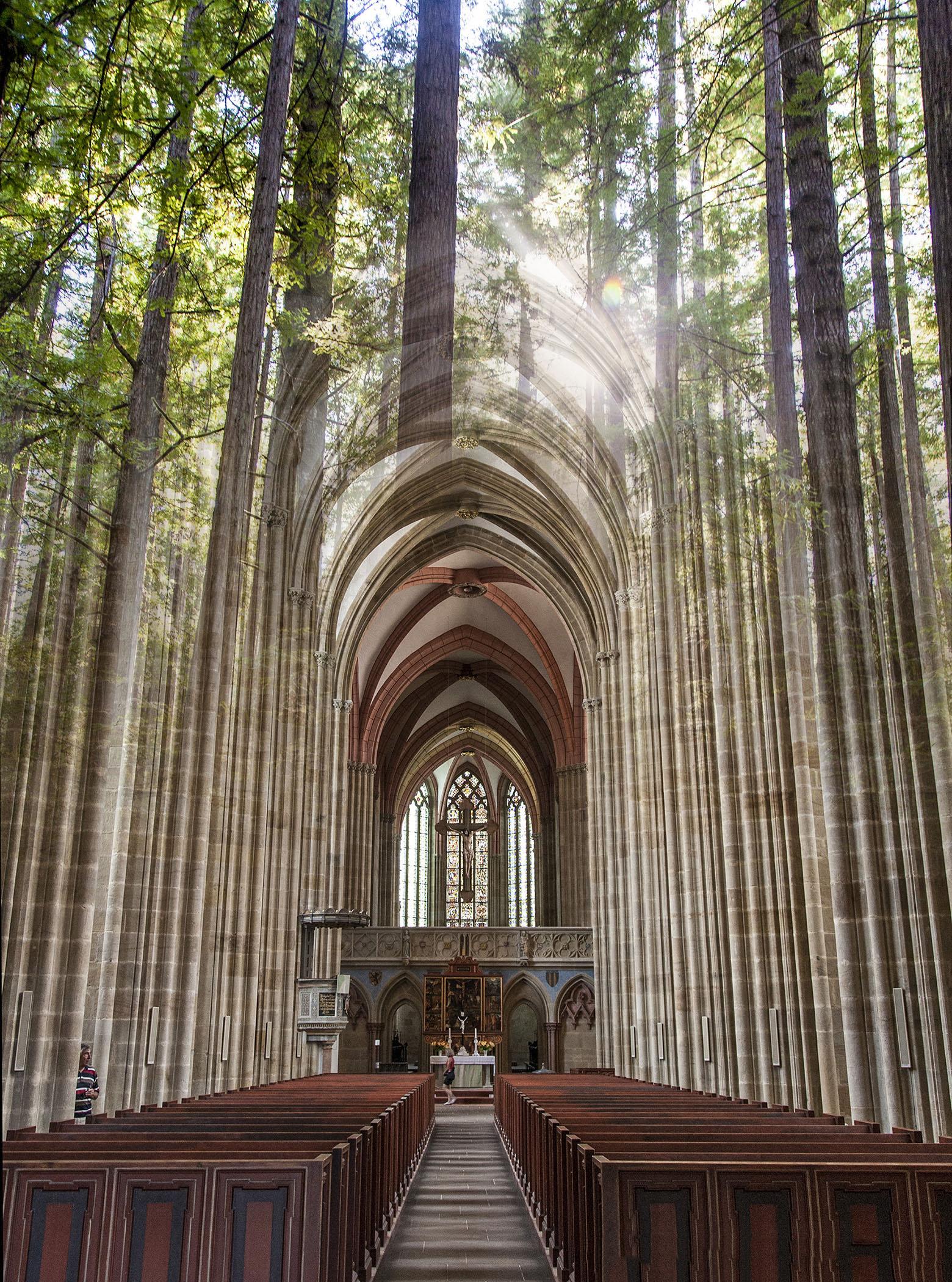 собор в лесу