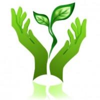 Государственная экологическая экспертиза для оборудования RU - EN