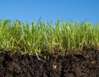 Система обработки почвы UK>EN