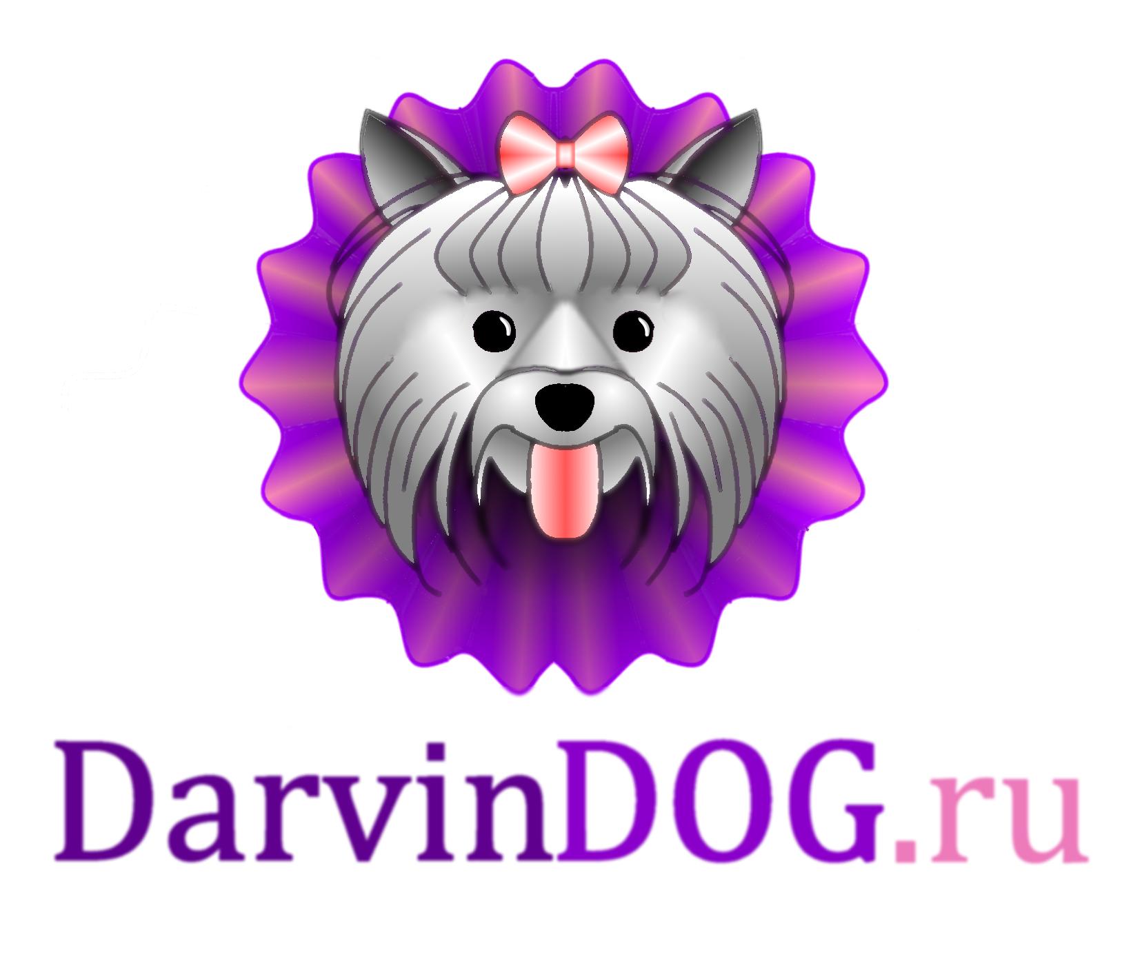 Создать логотип для интернет магазина одежды для собак фото f_883564c40d784ab6.png