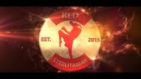 Лого RED, подвергли небольшим изменениям и сделали 3д логотип, + 3д анимация