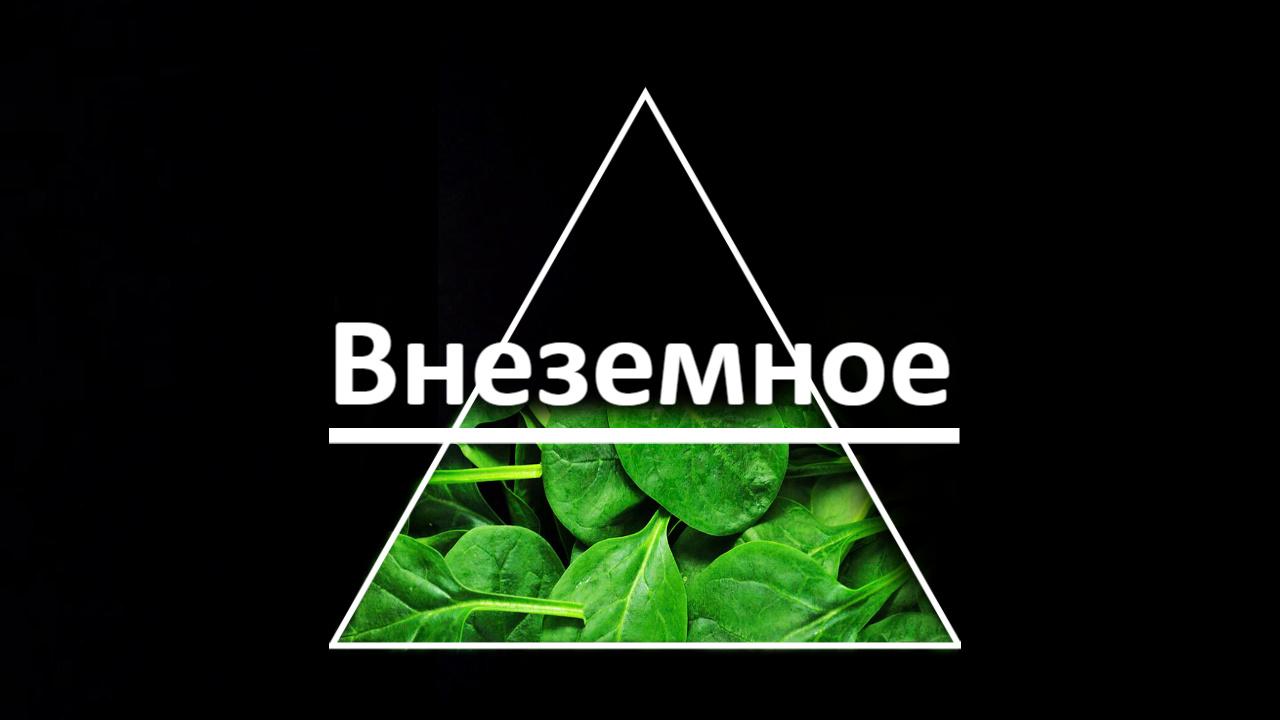"""Логотип и фирменный стиль """"Внеземное"""" фото f_3495e74994d7d695.jpg"""