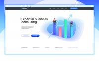 Лендинг с иллюстрациями и лого для бизнес консалтинг группы