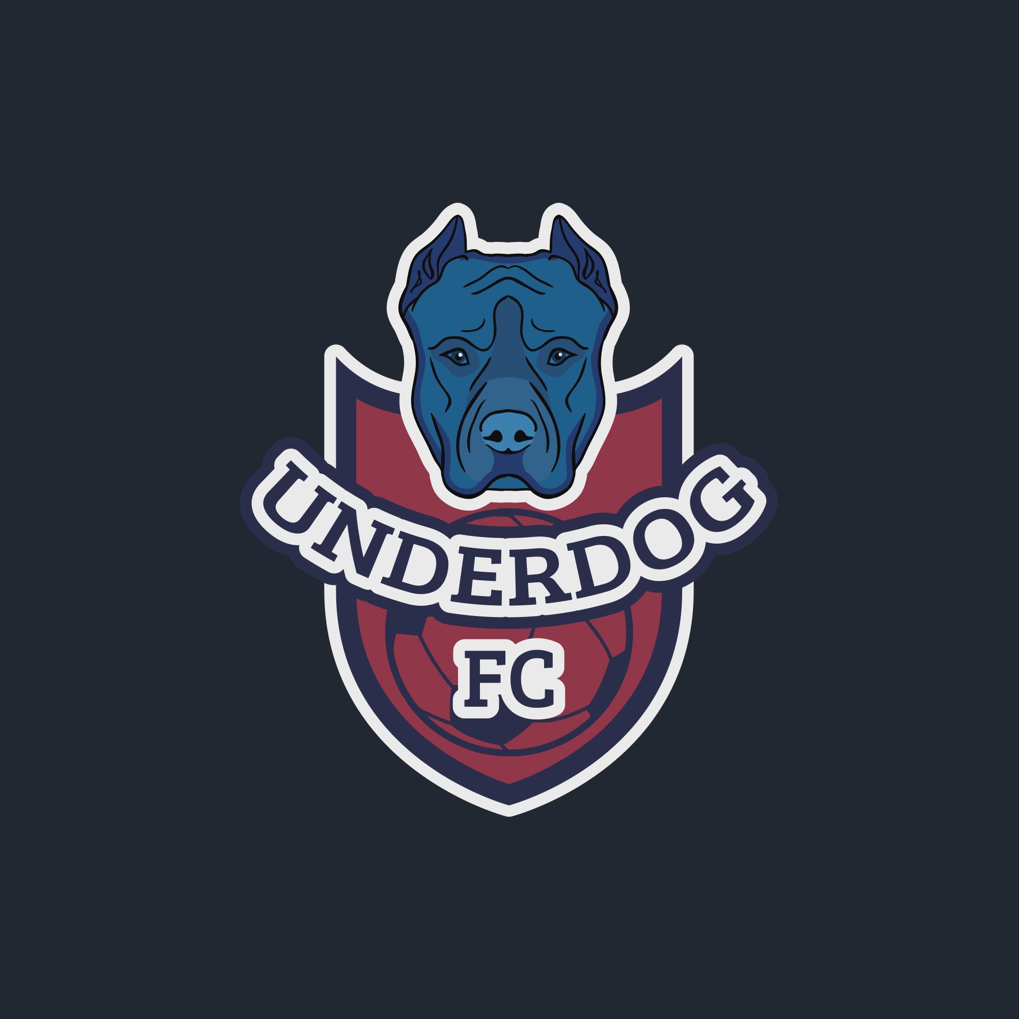 Футбольный клуб UNDERDOG - разработать фирстиль и бренд-бук фото f_0155caf90f630aba.jpg
