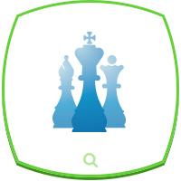 Шахматная организация
