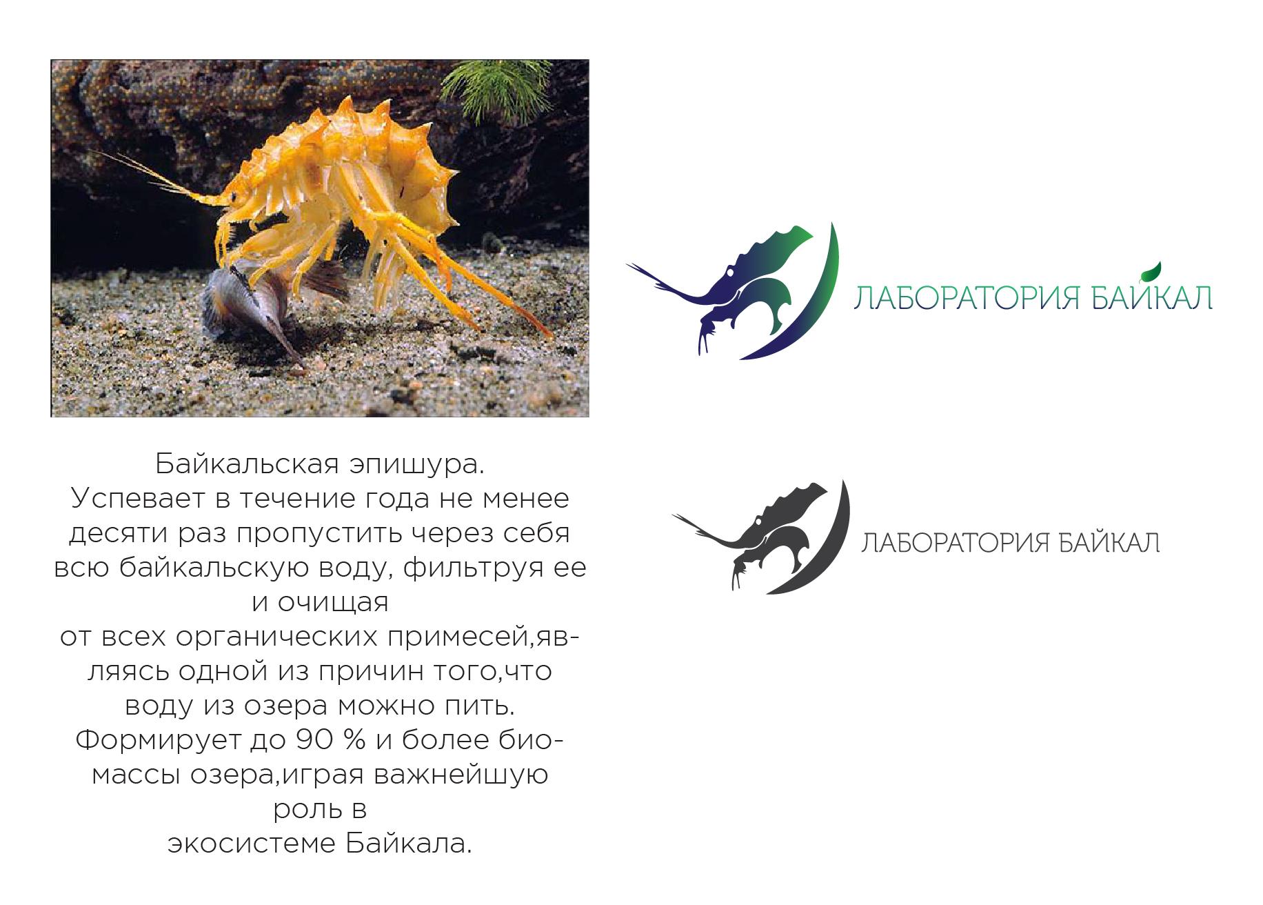 Разработка логотипа торговой марки фото f_41359720fde269de.jpg