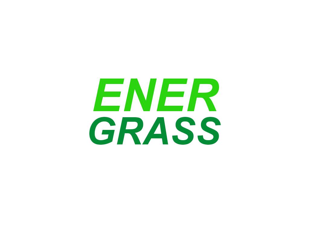 Графический дизайнер для создания логотипа Energrass. фото f_4025f8d6df3c2e89.jpg