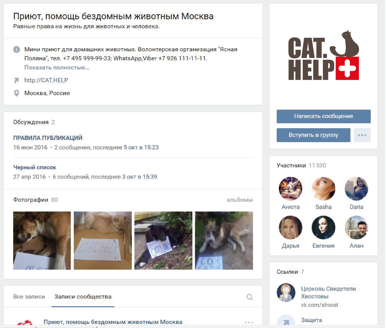 логотип для сайта и группы вк - cat.help фото f_46459db2f03634c4.jpg