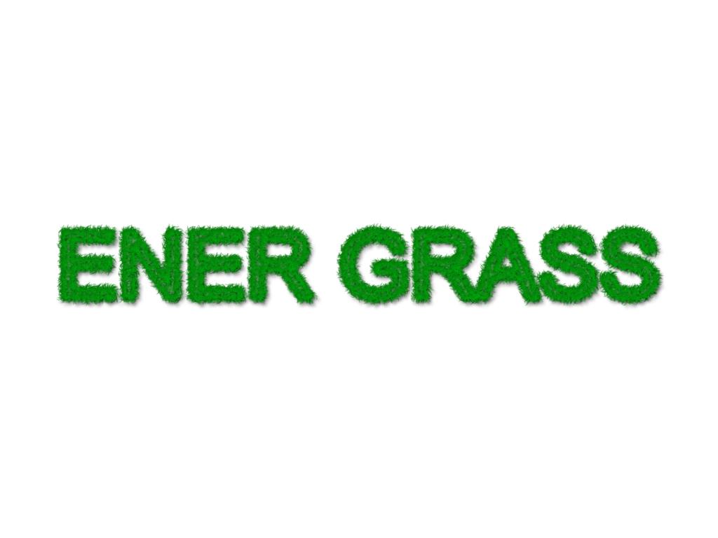 Графический дизайнер для создания логотипа Energrass. фото f_9575f84b0744a770.jpg