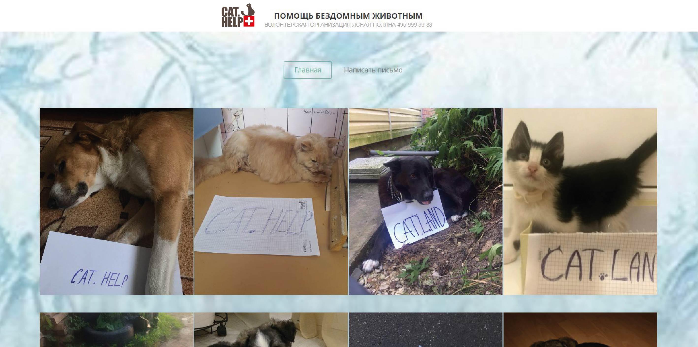 логотип для сайта и группы вк - cat.help фото f_98859db2effaa19a.jpg