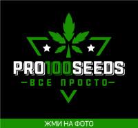 Pro100Seeds